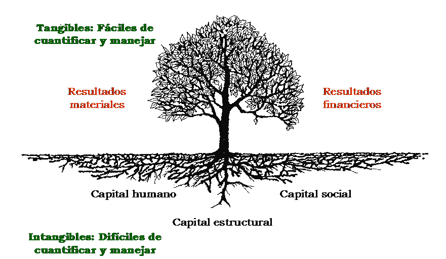 arbol-intangibles